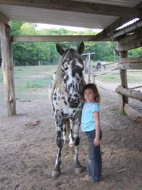 Les vacances chez Talisman Horses Sully_2011-05_04