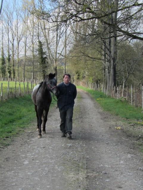 Les vacances chez Talisman Horses - Page 6 Ultimate_2012-04_04
