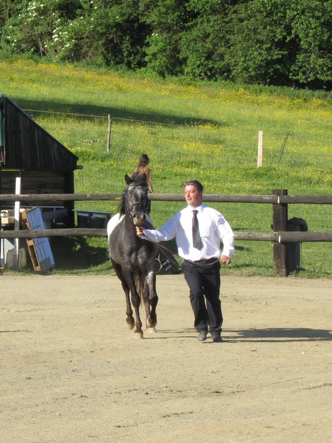 Les vacances chez Talisman Horses - Page 6 Ultimate_2012-06_01