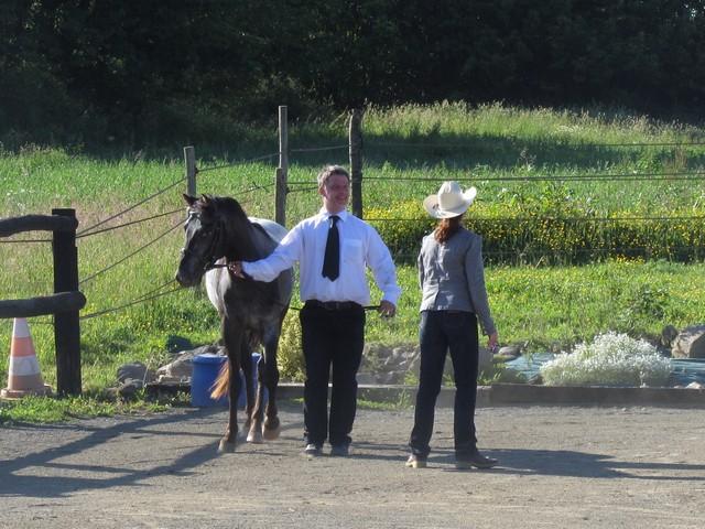 Les vacances chez Talisman Horses - Page 6 Ultimate_2012-06_02