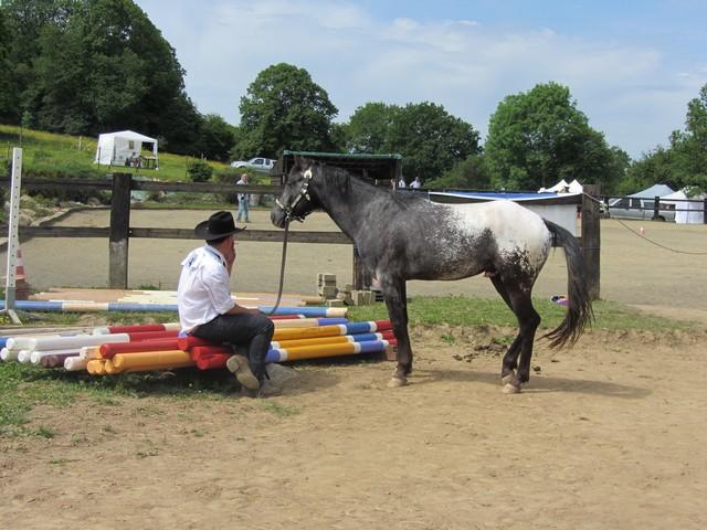 Les vacances chez Talisman Horses - Page 6 Ultimate_2012-06_06