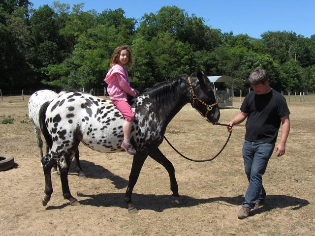 Les vacances chez Talisman Horses - Page 3 Venusian_2011-05_10