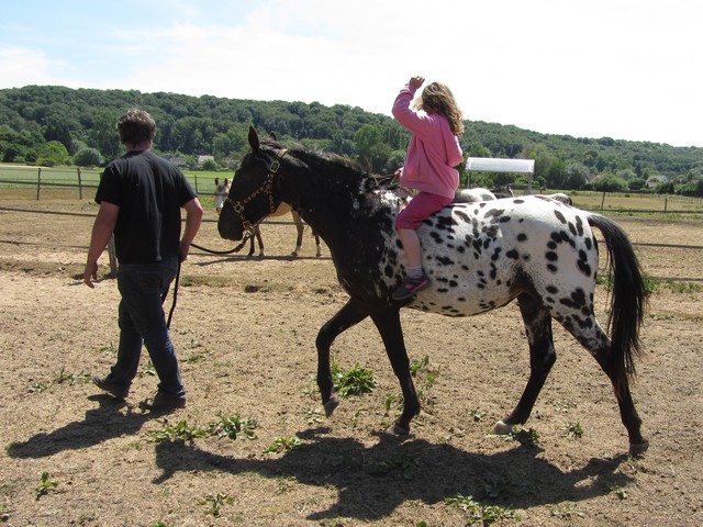 Les vacances chez Talisman Horses - Page 3 Venusian_2011-05_11
