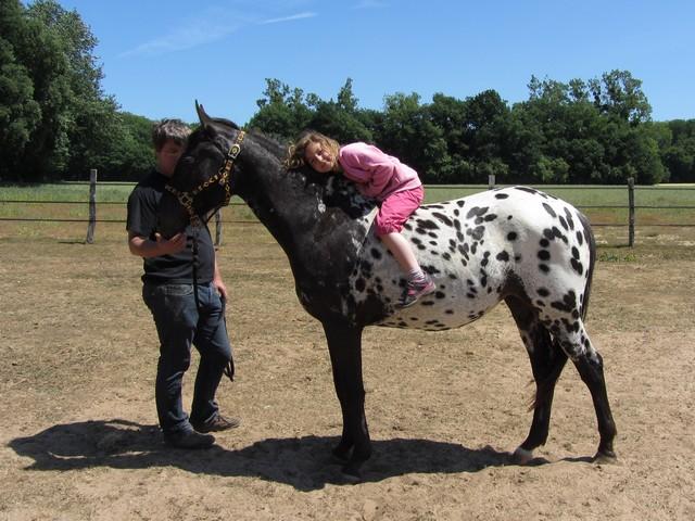 Les vacances chez Talisman Horses - Page 5 Venusian_2011-05_12